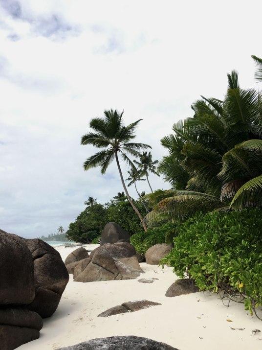 naturstrand-seychellen