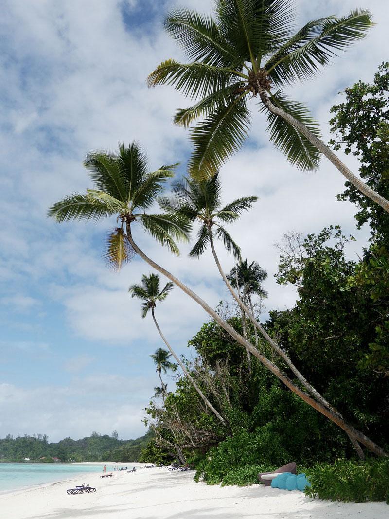 strand-hilton-silhouette-island