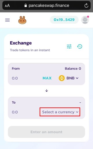 Select a currency on PancakeSwap