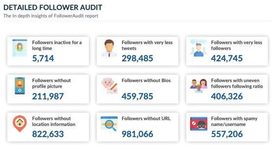 Twitter follower audit detailed insights