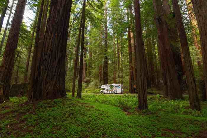 Rent An RV From Mighway