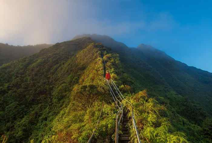 5 Best Hikes In Oahu For All Skill Levels