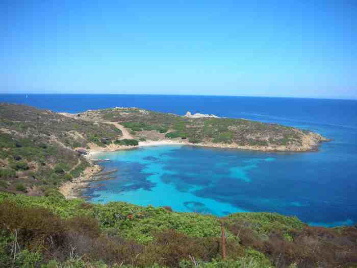 Asinara is one of the most unique islands in Italy