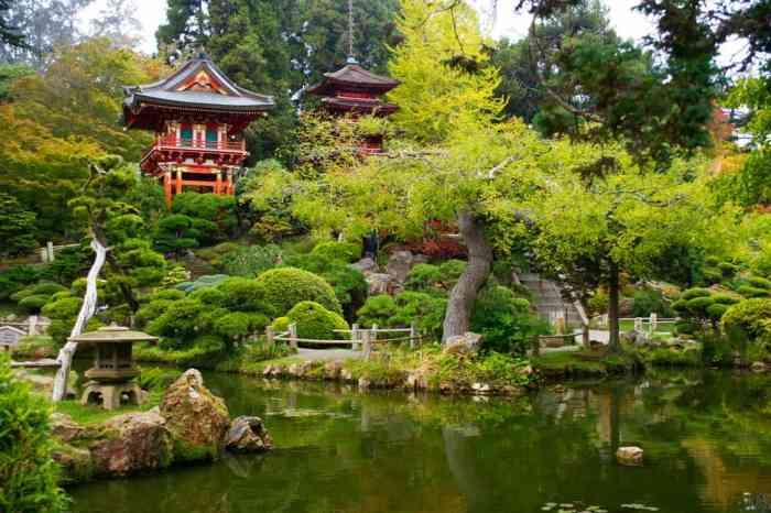 Japanese garden at golden gate park