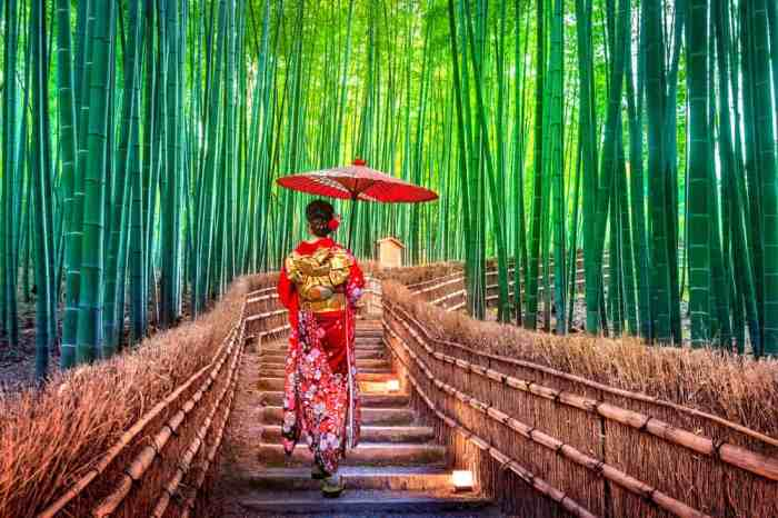 woman walking through Bamboo forest in Japan
