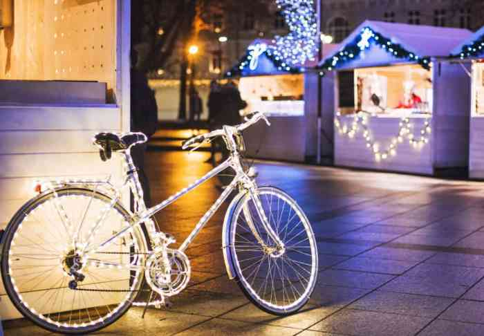 why not go biking during christmas in paris