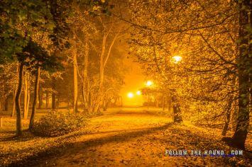 Latvia Night-4