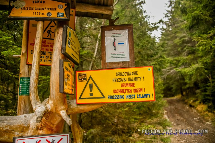 Tatras Mountains Insect problem