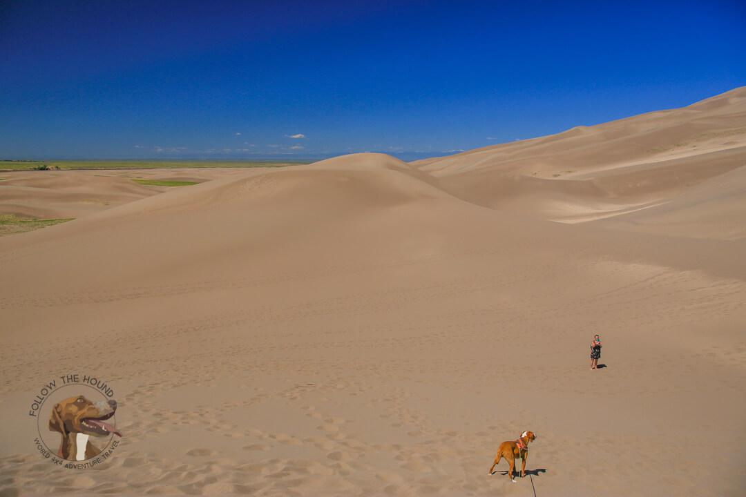 FTH - Sand Dunes National Park (10 of 37)