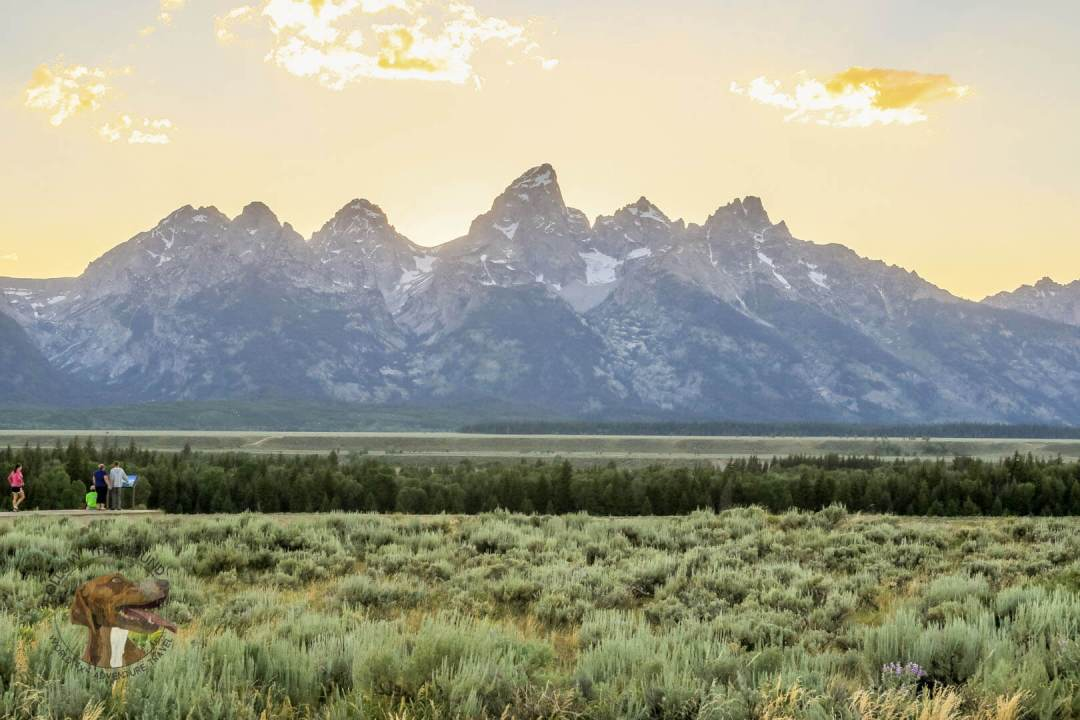 tetons (2 of 31)