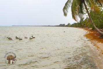 Belize-29