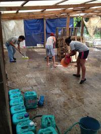 rebuilding animal shelter