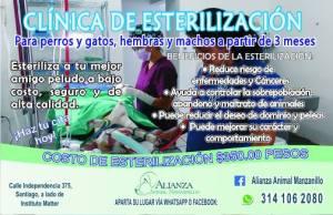 sterilization clinic alianza manzanillo