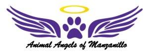 Animal welfare outreach program, Animal Angels