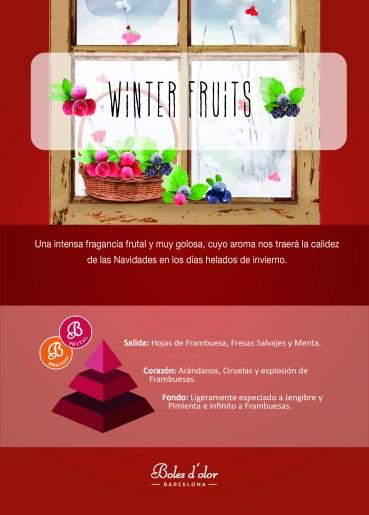 WINTER FRUITS Piramide Ambients