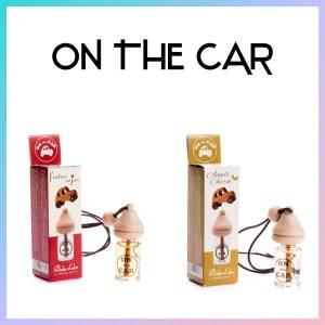 > On the Car