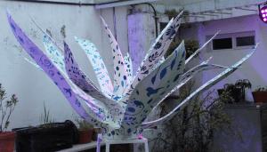 Cosechando arte con agave