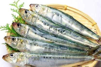 sardine, santé,