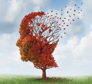 The journal Nature Communications published a study by a team from the Hôpital Maisonneuve-Rosemont (HMR) Research Centre that advances our understanding of Alzheimer's disease.