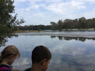 l'ambiente fluviale terze