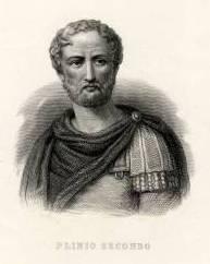 Fin da Teofrasto e Plinio è nota la caprificazione, vero prodigio della natura
