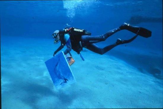 immagine tratta da http://annart.it/arte/pittori-subacquei-unarte-acquatica.php