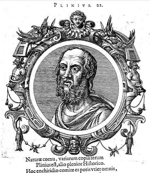 Plinio e l'aglio: non vi sarà richiesto alcun account