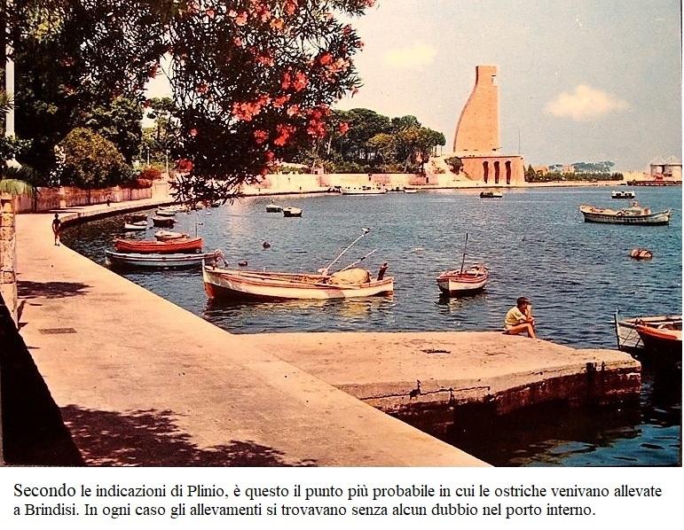 Brindisi, municipio romano (seconda parte)
