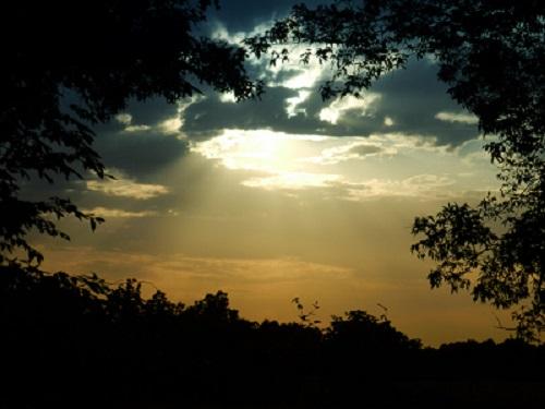 Evening Scene(blog)
