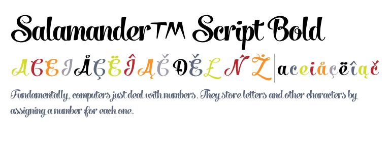 Salamander Script Bold Fonts Com