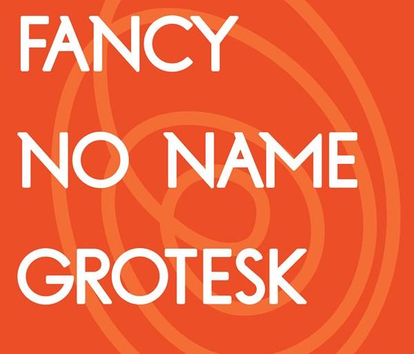 FNN Grotesk Bold Font