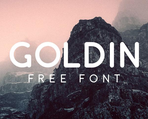 Goldin Font
