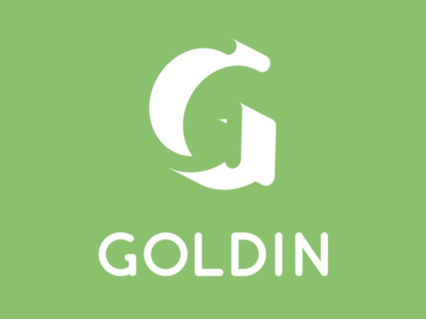 Goldin 1
