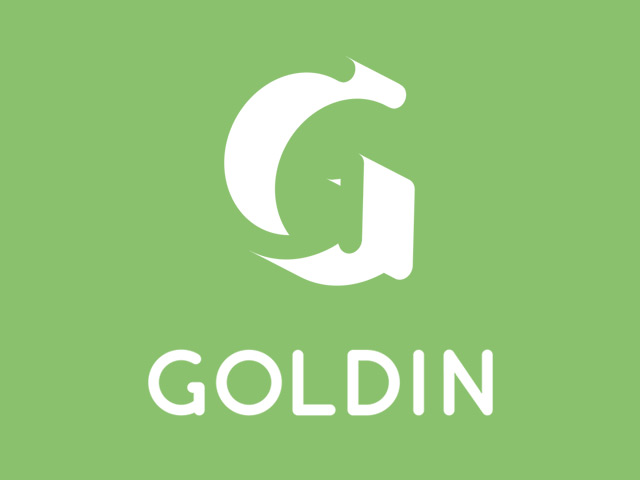 Goldin Rounded Font