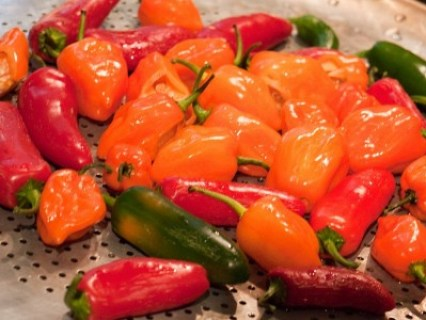 peppers_101309P1020308