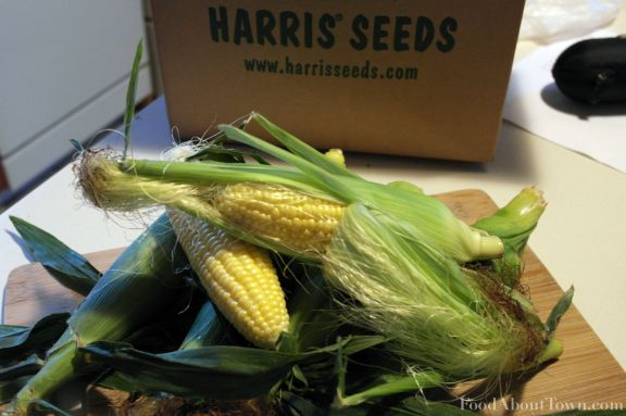 Harris Seeds Mr. Mini Mirai