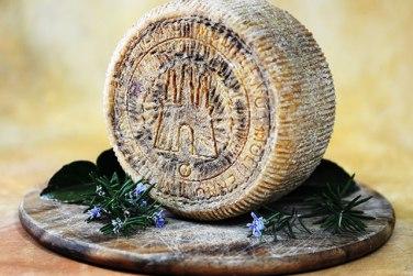 pecorino canestrato di moliterno igp formaggio pecorino formaggio latte di pecora azienda agricola cavalli certificazione igp basilicata lucania
