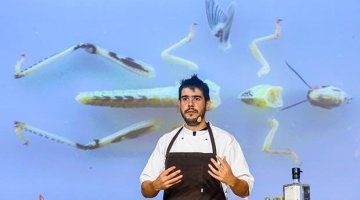 Roberto Flore, the insectologist chef, to cook at À La Piscine in Lyon