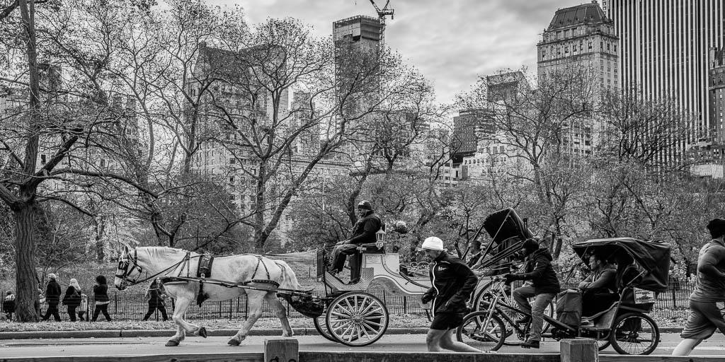 Pferdekutsche im NYC_Central Park.