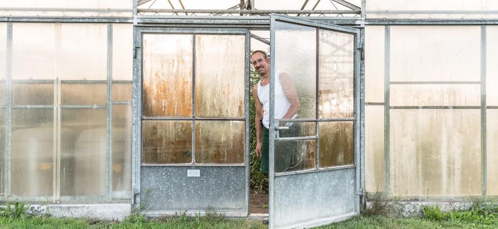 Manfred Urban in der Tür zum Gewächshaus