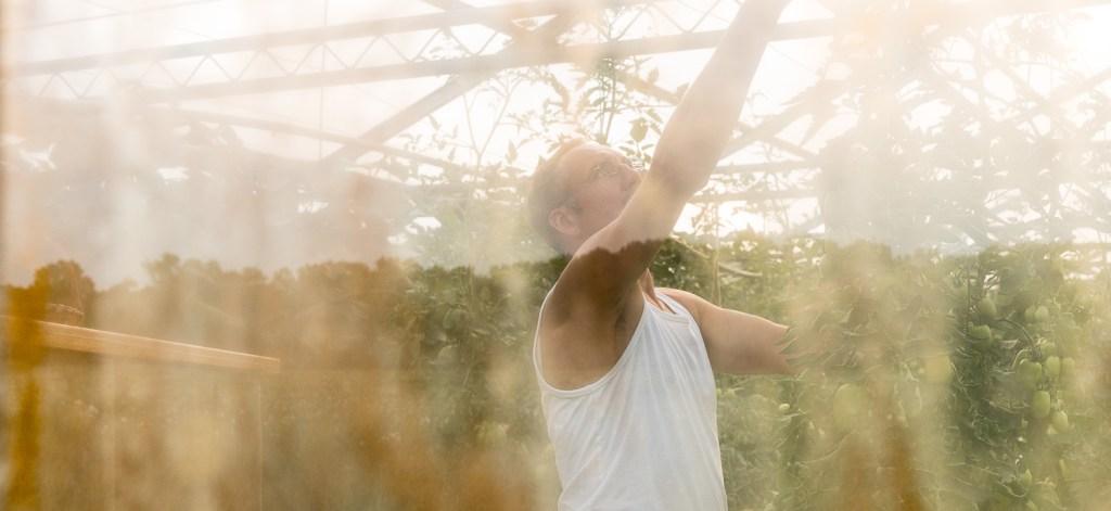 Manfred Urban im Gewächshaus, durch die Scheibe von außen fotografiert