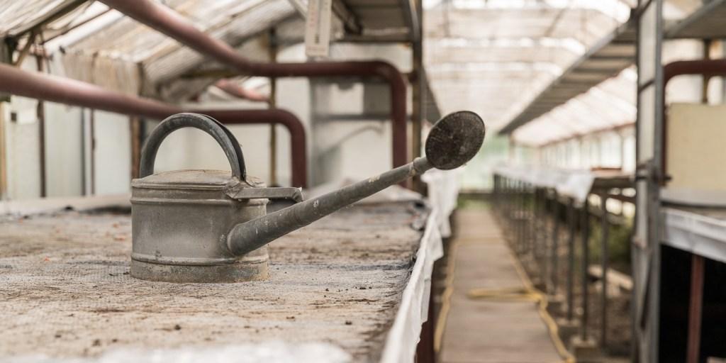 Alte Gießkanne im leeren Gewächshaus