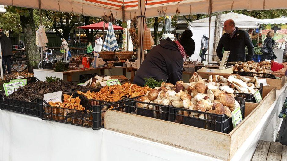Viktualienmarkt  mushrooms