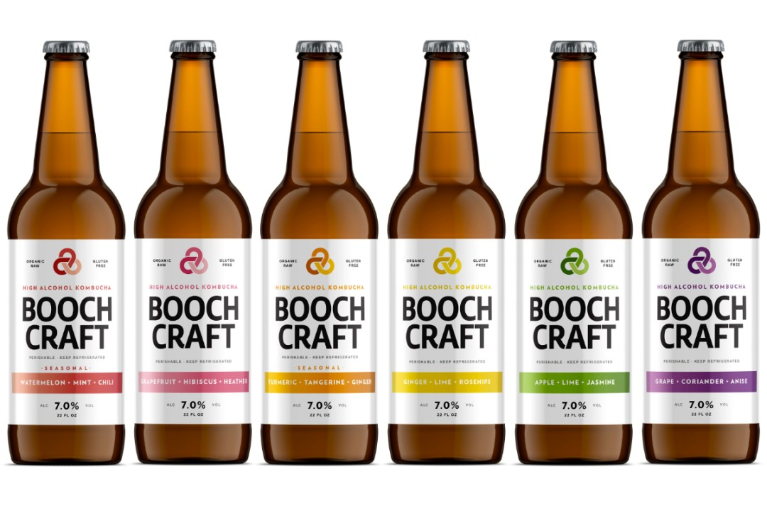 Image result for boochcraft kombucha""