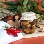 Funghi-del-Muschio-e1568477125148.jpg