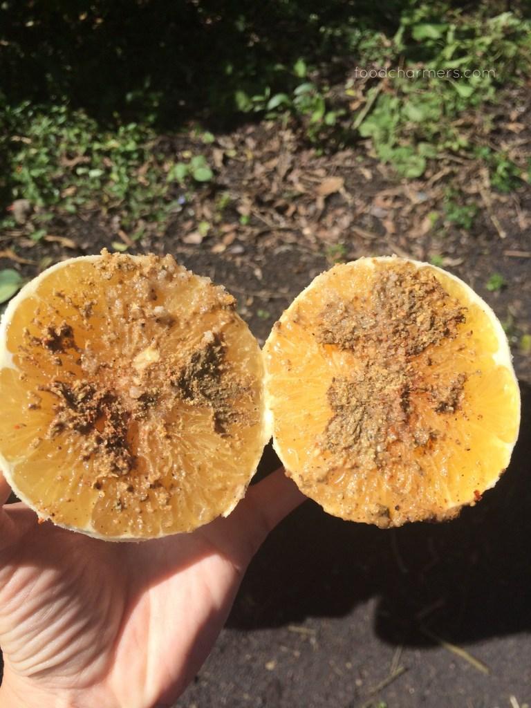 NaranjasConPepitoria1