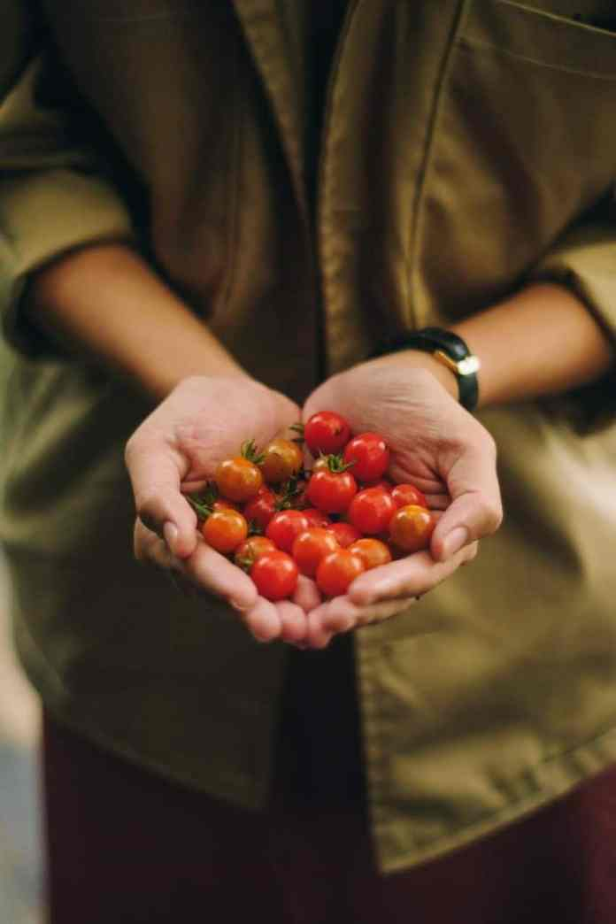 Why you should add more tomatoes to your diet
