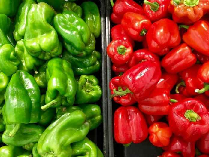 Spicing things up with peppers!