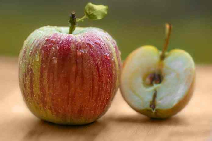 Recycling apple parts