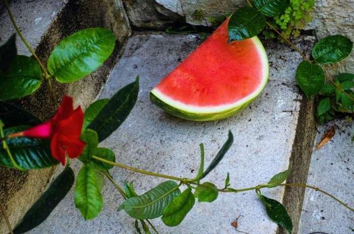 Watermelon and feta farro bowl with chickpeas and arugula